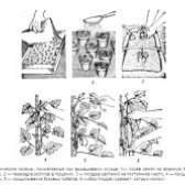 Як правильно робити обрізку огірків, зростаючих в теплиці