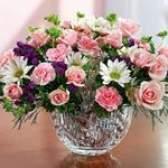 Як вибрати квіти в подарунок?