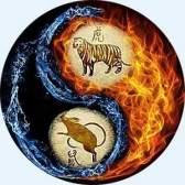 Чоловік-тигр - жінка-щур