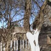 Допоможіть порадою, що робити з покинутим садом?