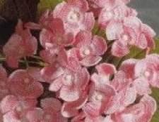Букет ніжно-рожевих квітів пов`язаних гачком