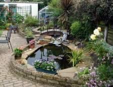 Штучна водойма на присадибній ділянці: секрети облаштування