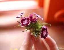 Як скласти букет квітів