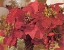 Червоні квіти