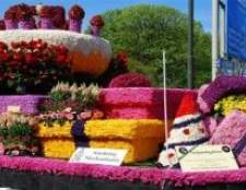Маршал провів квітковий парад