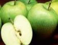 Народна медицина, рецепти лікування гастритів