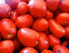 Рецепти закуски з помідорів